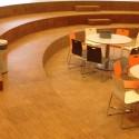 Montessori College Nijmegen